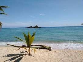 CAPURGANA EXCURSION A CAPURGANA DESDE CALI PLAN 2021  Desde Cali Palmira Tulua Cartago Pereira