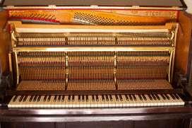 Piano Vertical Marca Steck 85 Teclas