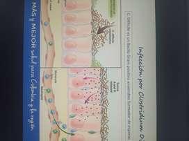 Se hacen revisiones de tema, trabajos en biologia, artículos de revisión cientifica