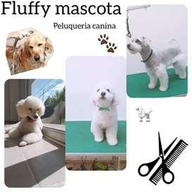 """FLUFFY """"PELUQUERÍA CANINA"""""""