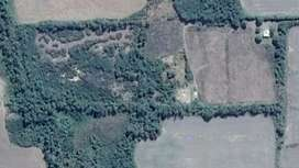 Finca 10 hectáreas EN VENTA