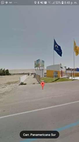 ALQUILO EN TACNA TERRENO DE 6000 m2, cercado con muros de 4 mts UBICADO FRENTE AL AEROPUERTO