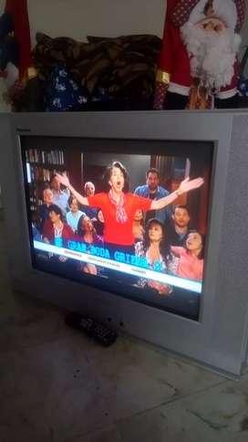 Televisor de 29 pantalla plana CULON SAMSUNG  TANTUS