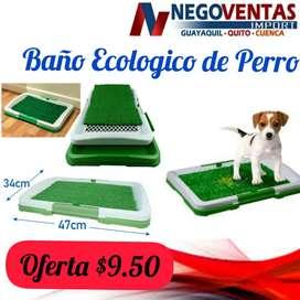Baño ecológico de perro