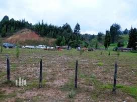 Lote Guarne - Antioquia (7829)
