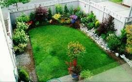 Jardineria y limpieza