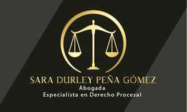 Abogada Especialista en Derecho Procesal
