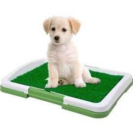 Gratis Envio Tapete de Entrenamiento Puppy Potty baño para mascotas