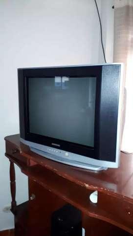Vendo TV de 21 en perfecto estado con su control llamar
