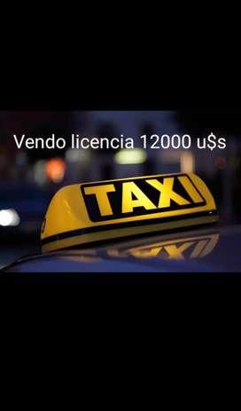 Vendo licencia de taxi
