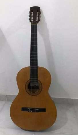 Guitarra criolla palmer