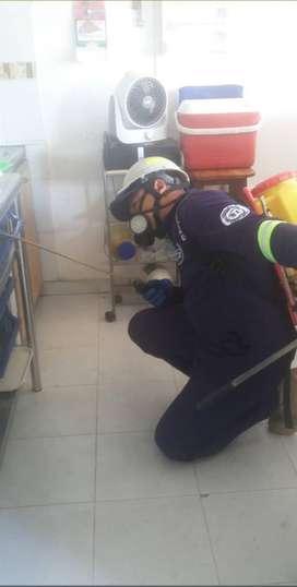 Servicios de Limpieza Y Desinfección