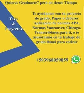 Transcripción de Proyectos
