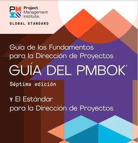 PMBOK 7 2021 ESPAÑOL PMI PMP