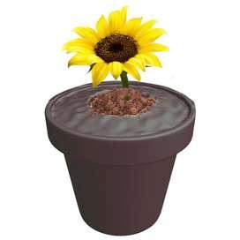 Maseta Impresa en Impresora 3D Pon Tus Flores Aqui Polimero Biodegradable