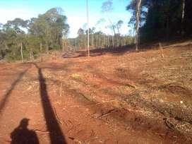 Chacra 35 hectáreas, San Vicente, Misiones