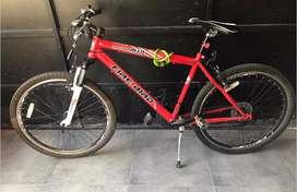 Bicicleta fire bird m-01