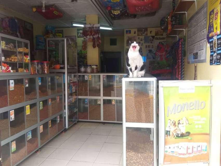 Venta de Tienda Para Mascotas 0