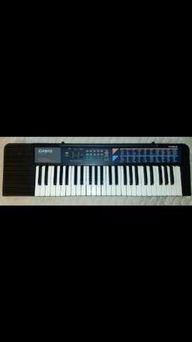 Organeta Casio c110