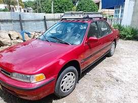 Vendo Honda Accord 1993 muy bien cuidado