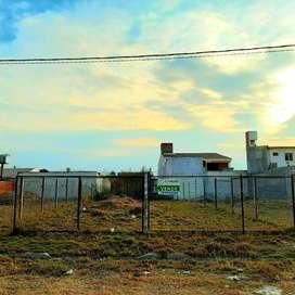 Zona Estacion Alvarado