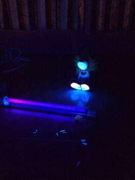 Alquiler de luces y sonido