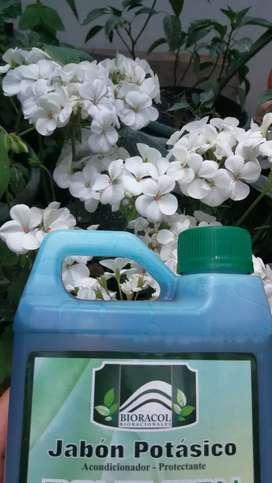 Jabón potasico insecticida de uso agricola 120 ml y 1000 ml