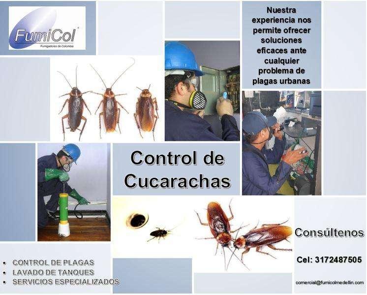 Control de Cucarachas FUMICOL SAS 0