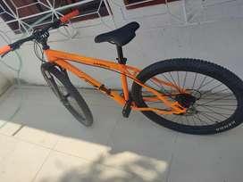 Bicicleta Rin 29.