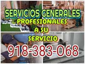 Servicios: electricista,pintor ,carpintero,gasfitero,jardinero,mayoliquero,fumigacion,fumigador,jardin vertical,cascadas