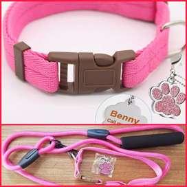 Collar y correa para mascotas Gratis Placa de identificación