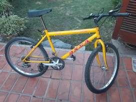 Bicicleta Mount.X Rod. 24
