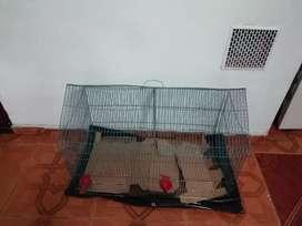 jaula para hámster y conejo