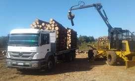 VENDO PERMUTO Grúa forestal autocargable 6x6 TCH . grúa marca FARMI