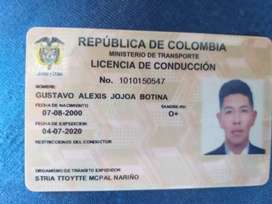 Busco empleo como conductor .