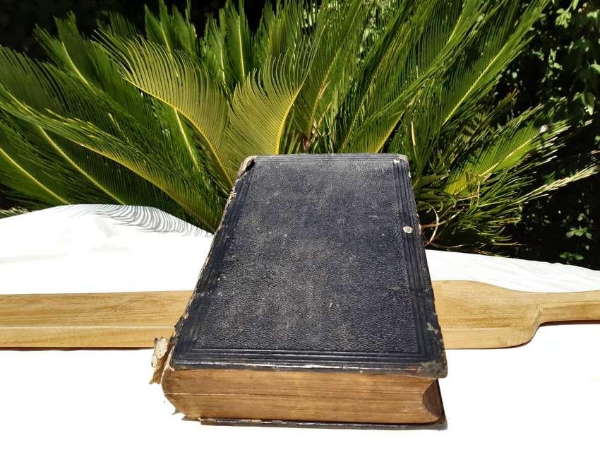 Antigua Biblia Alemana 0