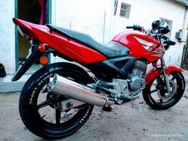 Vendo O Permuto Honda Twister Modelo 2013 impecable estéticamente y de motor. Cubiertas Nuevas Pirelli exelente andar