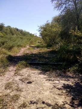 Campo de 450 hectáreas en Formosa