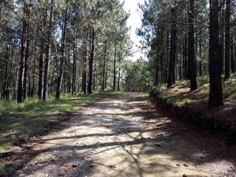 UNICA OPORTUNIDAD EN POTRERO DE GARAY LOTES A PARTIR DE 3000 m2 0