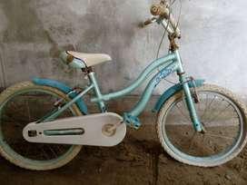 Linda bicicleta para niña - jovencita