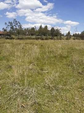 Vendo 5 lotes de terreno sector la raya Deleg-Cuenca