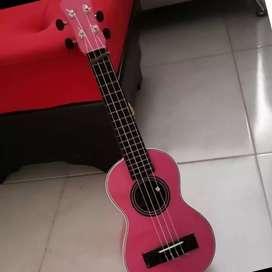 Ukele soprano color rosado con forro casi nuevo