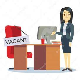 Oportunidad laboral para jóvenes y adultos sin experiencia