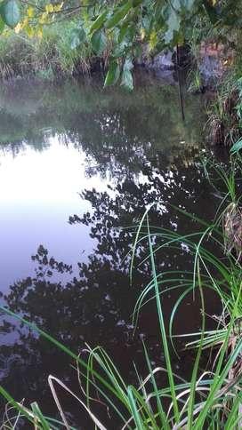 Chacra con Casa, arroyo, pozo perforado y laguna en Leandro N Alem, Misiones