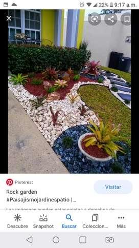 Se realiza decoraciones de jardines. Y piletas con plantas