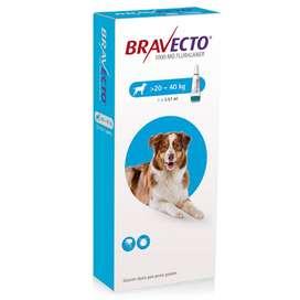 Bravecto 20-40kg Antipulgas Garrapaticida Por 3 Meses Perros fácil aplicación OFERTON!
