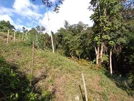 2 ) lotes en villamaria  la floresta