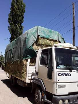 Se vende Ford cargo 915