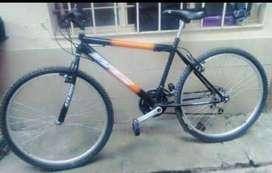 Bicicleta WG con cambios, 15 meses de uso