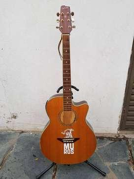 Vendo Guitarra Electroacustica. Luthier De Castro Adolfo